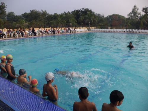 View the album Swimming demo on PTM Day